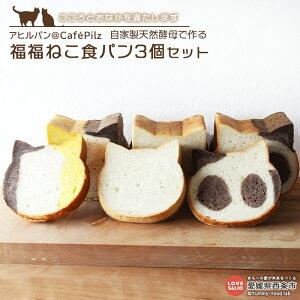 【ふるさと納税】アヒルパン@CafePilz こころとおなかを満たします。<自家製天然酵母で作る 福福ねこ食パン3個セット> プレーン ココア かぼちゃ しょくぱん 猫 カフェピルツ※2か月以内