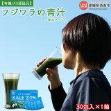 フジワラの青汁・粉末タイプ(30包入)×1箱