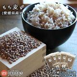 もち麦(愛媛県産ダイシモチ)2.5kg+むぎむぎ媛っ子(ポン菓子)