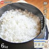 押し麦(愛媛県産はだか麦)6kg+はだか麦のポン菓子