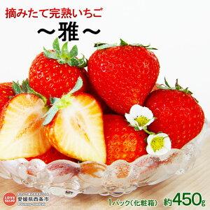 【ふるさと納税】<摘みたて完熟いちご 〜雅〜(化粧箱) 約450g> ※2020年11月〜12月末迄に順次出荷します。 イチゴ 苺 【冷蔵】【JP】