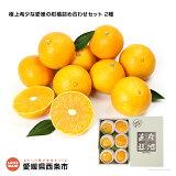 極上希少な愛媛の柑橘詰め合わせセット2種
