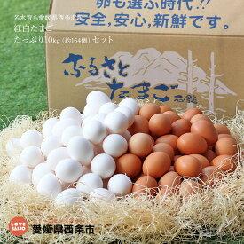 【ふるさと納税】<名水育ち愛媛県西条市産 紅白たまご たっぷり10kg(約164個)セット> ※1か月以内に順次出荷します。 卵 玉子 タマゴ 愛媛県 西条市 【冷蔵】