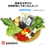 <西条名水育ちの新鮮野菜とうまいもんセット>(旬のお野菜と加工品セット)