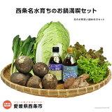 西条名水育ちのお鍋満喫セット(旬のお野菜と調味料のセット)