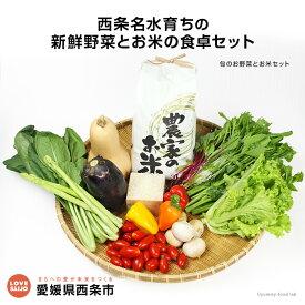 【ふるさと納税】<西条名水育ちの新鮮野菜とお米の食卓セット>※1か月以内に順次出荷します。(旬のお野菜とお米セット)あきたこまち ひとめぼれ サラダ【冷蔵】【JP】