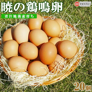 【ふるさと納税】<青汁地養素育ち 暁の鶏鳴卵 20個> ※翌月末迄に順次出荷します。 卵 玉子 タマゴ 愛媛県 西条市 【冷蔵】
