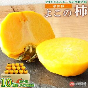【ふるさと納税】<渋抜き柿 よこの柿(横野柿) 10kg(M〜3Lサイズお任せセット)>※2か月以内に順次出荷します。 渋柿 干し柿 希少 果物 フルーツ おやつ やまちゃんふぁーむ 愛媛県 西条