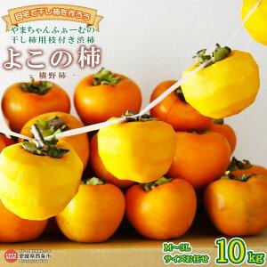 【ふるさと納税】自宅で干し柿を作ろう!<干し柿用枝付き渋柿 よこの柿(横野柿) 10kg(M〜3Lサイズお任せセット)>※2か月以内に順次出荷します。 渋柿 希少 果物 フルーツ おやつ 自作