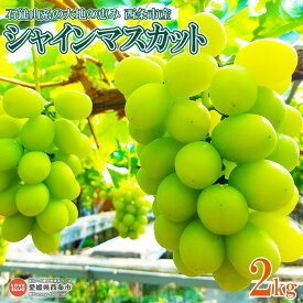 【ふるさと納税】予約受付!<石鎚山系の大地の恵み 西条市産 シャインマスカット 2kg> ※2019年8月中旬から9月末迄に順次出荷します。 ブドウ ぶどう 高級 スイーツ 果物 フルーツ 愛媛県 西条市 【冷蔵】