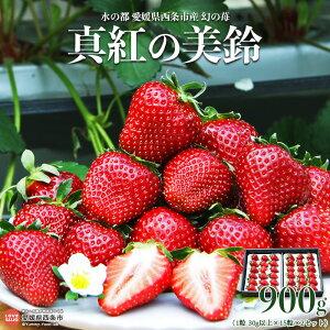 【ふるさと納税】<水の都 愛媛県西条市産 幻の苺「真紅の美鈴」30g×30粒 約900g(30g×15粒×2)> ※2020年12月中旬〜2021年2月末までに順次出荷します。 イチゴ いちご 黒苺 黒いちご 希少種