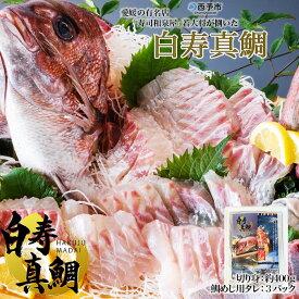 【ふるさと納税】<白寿真鯛(約400g)と秘伝のタレ>※1か月以内に順次出荷します。 まだい マダイ たい 養殖 特産品 魚 赤坂水産 愛媛県 西予市 【冷蔵】