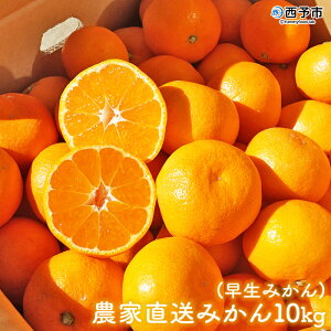 【ふるさと納税】<浅井農園 農家直送みかん10kg(早生みかん)>※2020年11月中旬から12月上旬迄に順次出荷 みかん 果物 フルーツ ミカン オレンジ 特産品 愛媛県 西予市 【常温】