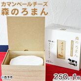 カマンベールチーズ「森のろまん」250g×1個