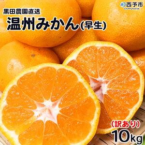 【ふるさと納税】先行予約<訳あり 黒田農園直送 温州みかん10kg(サイズ不揃い) 早生>※2021年11月下旬から12月末迄に順次出荷します。 ワケアリ 訳 果物 ミカン 柑橘 フルーツ 特産品 愛媛県
