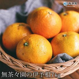 【ふるさと納税】<無茶々園の伊予柑7kg>※2021年1月下旬から2月下旬迄に順次出荷します。 果物 いよかん 柑橘 フルーツ 特産品 愛媛県 西予市 【常温】