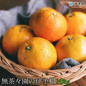 【ふるさと納税】<無茶々園の伊予柑10kg>※2021年1月下旬から2月下旬迄に順次出荷します。 果物 いよかん 柑橘 フルーツ 特産品 愛媛県 西予市 【常温】