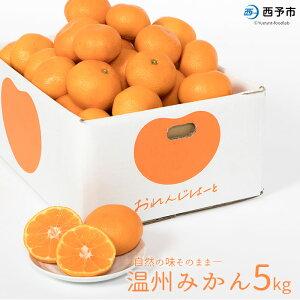 【ふるさと納税】先行予約<温州みかん5kg> ※2021年11月上旬から12月末迄に順次出荷します。 柑橘 蜜柑 果物 フルーツ ミカン オレンジ 特産品 おれんじはーと 愛媛県 西予市 【常温】