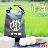田力米5kg(品種:コシヒカリ)