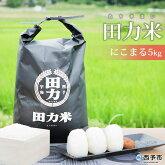 田力米5kg(品種:にこまる)