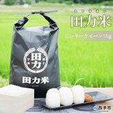 田力米5kg(品種:ミルキークイーン)