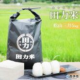 田力米5kg(品種:松山三井)