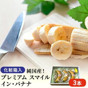 【ふるさと納税】純国産! プレミアム スマイル イン・バナナ 3本 【果物・詰合せ・セット・フルーツ】