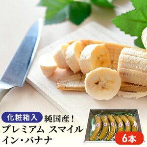 【ふるさと納税】純国産! プレミアム スマイル イン・バナナ 6本 【果物・詰合せ・セット・フルーツ】