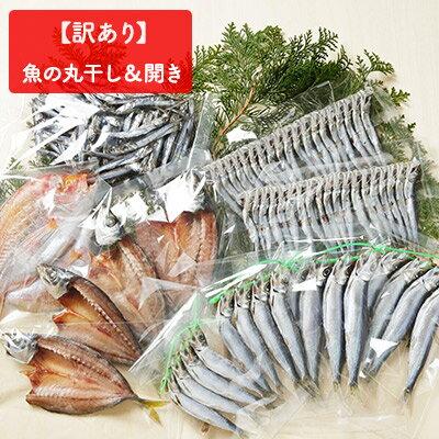 【ふるさと納税】【訳あり】魚の丸干し&開きお得セット★3kg!! 【魚貝類・干物・アジ】