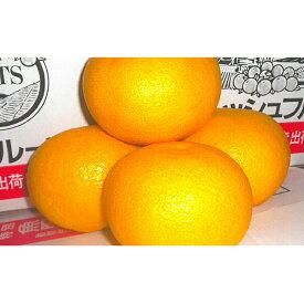 【ふるさと納税】甘夏10kg 【果物類・みかん・柑橘類】 お届け:2021年3月上旬〜5月上旬