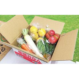 【ふるさと納税】取りたて新鮮!旬の野菜詰め合わせセット 【野菜・セット・詰合せ】