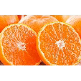 【ふるさと納税】温州みかん10kg 【果物類・みかん・柑橘類】 お届け:2020年11月下旬〜2020年12月下旬