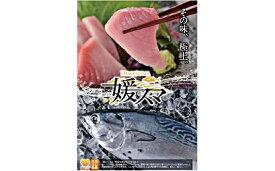 【ふるさと納税】愛媛県産養殖「媛スマ」 【魚貝類】