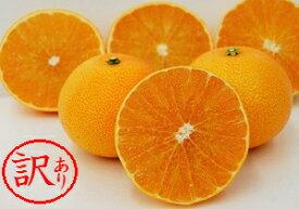 【ふるさと納税】訳あり品 みかん職人 の 夢オレンジ 5kg 果物 柑橘 みかん フルーツ 紅まどんな 同品種 お届け:11月20日〜1月31日
