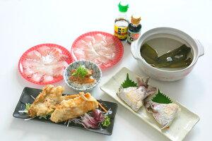 【ふるさと納税】愛南サン・フィッシュの真鯛一尾丸ごと食べ尽くしセット【真鯛・しゃぶしゃぶ・愛南町・加工品】
