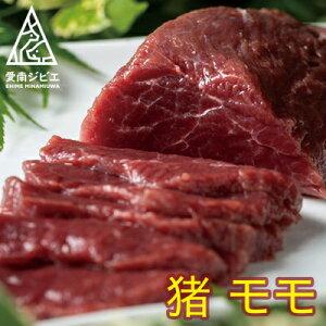 【ふるさと納税】愛南ジビエの猪モモ肉 500g