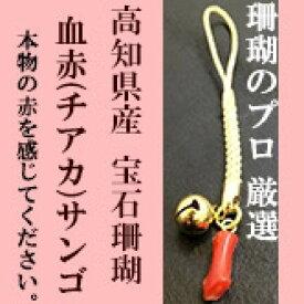 【ふるさと納税】小さい血赤珊瑚根付 本物の宝石(サンゴ)高知県産血赤珊瑚の赤を見てみたいという方に!
