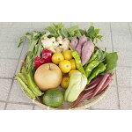 【ふるさと納税】【12カ月定期便】野菜屋高知の新鮮野菜セット/日曜市の野菜を味わう