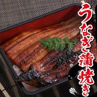 鰻のかば焼き