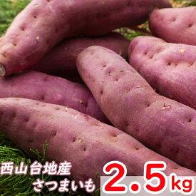【ふるさと納税】RK006掘りたてさつまいも2.5kg