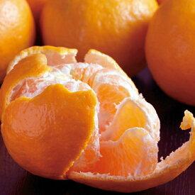 【ふるさと納税】【訳あり】ポンカン3kg 果物 柑橘 先行予約 送料無料 <RK059>