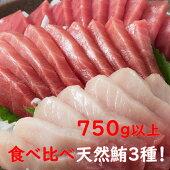 【ふるさと納税】GE−02厳選天然マグロ3種セット