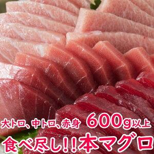 【ふるさと納税】GE007厳選天然本マグロセット<魚 刺身 にも使える 本 まぐろ 大トロ 中トロ 赤身 セット です 送料無料>