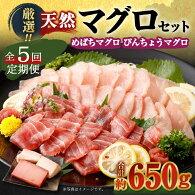 【ふるさと納税】GE008厳選天然マグロ2種食べ比べ定期便【全5回】<訳あり魚刺身にも使える本まぐろ中トロ赤身セットです送料無料>