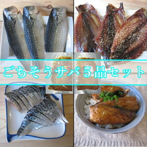 【ふるさと納税】ごちそうサバ5品セット 魚 魚介類 さば 干物 みりん干し 漬け 酢締め 味噌煮<IZ011>