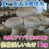 【ふるさと納税】NC−02佐喜浜しいたけ(約1kg)