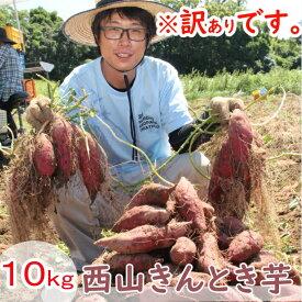 【ふるさと納税】【訳あり】西山きんとき芋(さつまいも)10kg 野菜 送料無料 <TA024>
