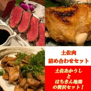 【ふるさと納税】土佐肉の詰め合わせセット 肉 魚 鶏肉 かつおのたたき 加工品 惣菜 冷凍 送料無料 <SZ073>