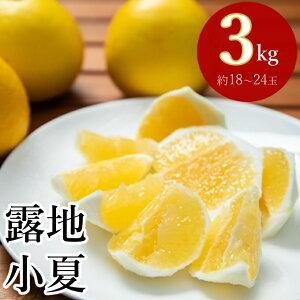 【ふるさと納税】熟成 露地小夏 3kg 柑橘 フルーツ 果物 送料無料<ME001>
