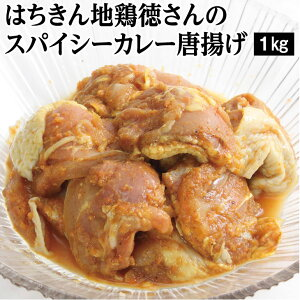 【ふるさと納税】はちきん地鶏徳さんのスパイシーカレー唐揚げ 鶏肉 惣菜 冷凍 送料無料 <YJ054>